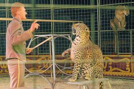 El Circo Williams, disgustado con la decisión de Cort de no permitir animales salvajes