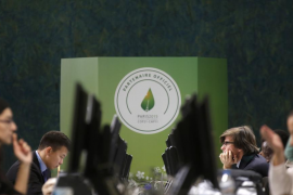 El acuerdo de París convertirá los bosques en una herramienta contra el cambio climático
