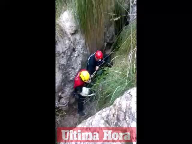 Rescatan a un perro que cayó dentro de una cueva en una finca de Escorca