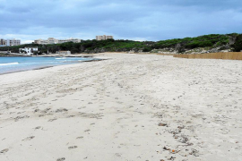 Costas autoriza a Capdepera a retirar arena de Cala Agulla para su regeneración natural
