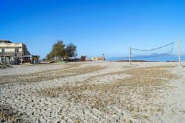 La playa de Son Serra aspirará a la bandera azul y tendrá chiringuito, hamacas y sombrillas