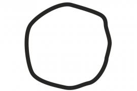 ¿Ves un círculo o un cuadrado? Esta ilusión óptica te dirá si eres de derechas o de izquierdas