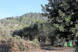 El Ajuntament de Mancor mantiene abierto el Parc Verd pese a la orden de precinto del Govern