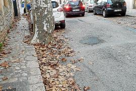 Sóller activa un plan de choque ante las quejas por suciedad en las calles