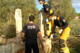 Localizan el cadáver de un hombre desaparecido hace un mes en Palma