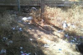 Deplorable estat del parc del Conservatori de Palma