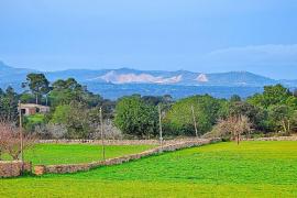 Preocupación por el creciente impacto paisajístico de la cantera de Son Amat