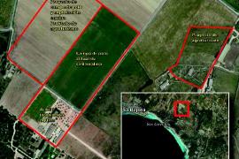 Campos apuesta por legalizar el campo de polo de sa Barralina y construir uno nuevo
