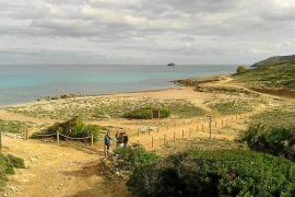 El sistema dunar de s'Arenalet en el Parc de Llevant sufre el impacto de los visitantes