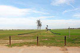 Sorpresa en Campos ante la solicitud de un nuevo campo de polo que ya está construido