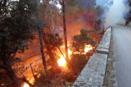 Incendio forestal al borde de la carretera que une Valldemossa y Deià