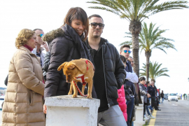 Sant Antoni, el día de los animales
