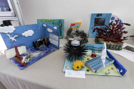 Concurso de mascotas de la XXI Semana del Mar