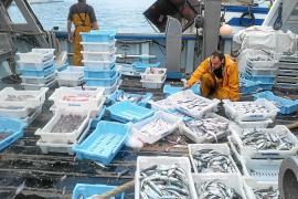 Parón de las barcas de arrastre para recuperar los recursos pesqueros