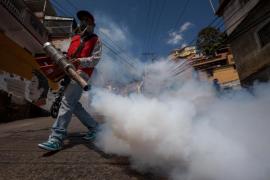 Brasil autoriza a entrar por la fuerza en viviendas para fumigar contra el zika