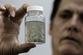 Brasil detecta el zika en orina y saliva e investiga si pueden transmitirlo
