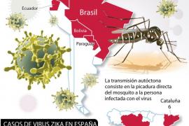Gráfico del virus zika
