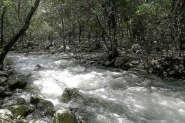 El investigador en Hidrología Joan Pericàs insta al Govern a vender el agua de las Fonts Ufanes