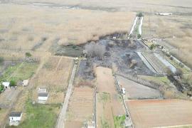 Segundo incendio de cañizo en la Albufera de Alcúdia en una semana