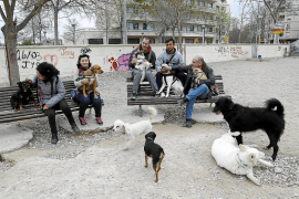 Usuarios critican el mal estado del parque canino de sa Riera