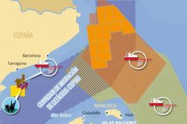 Mar Blava alaba el espaldarazo del Parlament al corredor de cetáceos