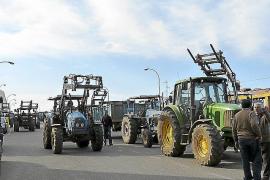 Asaja vota este jueves si convoca una tractorada contra el Govern el sábado en Campos