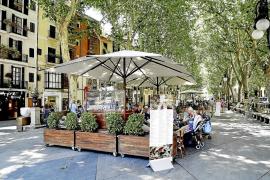 Cort revisará la categoría de todas las calles con terrazas
