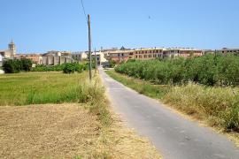 Veintiséis empresas concursan para construir la nueva escuela municipal
