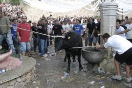 Fiestas de siempre protagonizadas por animales