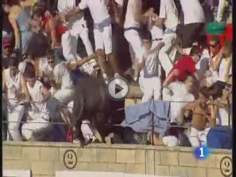 Un toro salta al tendido de la plaza de toros de Tafalla