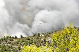 El fuego ha calcinado ya más de 130 hectáreas en Eivissa