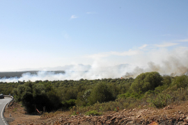 Investigan el origen del incendio forestal en la finca de Petra del fiscal superior, que ha quemado 140 hectáreas