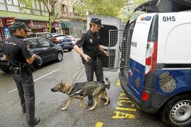 La Policía Nacional intercepta en Palma un kilo de cocaína en un paquete