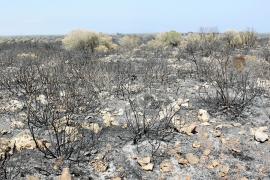 PETRA, incendi a Son Doblons, prop de Santa Margalida