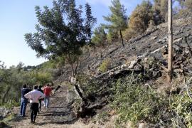 El dueño de la finca de Cala Tuent: «Por fortuna, el fuego no llegó a las casas»
