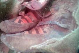La momia de 1.500 años que calza unas Adidas sorprende al mundo