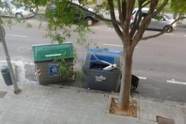 Emaya destroza los árboles