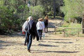 Cort limitará los lugares de  paso de  bicis, corredores y perros en el bosque de Bellver