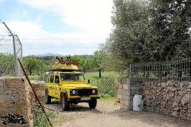 Polémica por la instalación de un helipuerto en el solar de la depuradora de Can Picafort