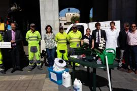 Comienza en Palma la campaña de control del mosquito tigre