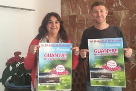 La «Campanya de Primavera» de Algaida sortea un viaje a Toledo