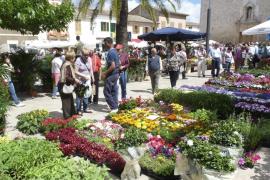 Costitx celebra la Fira de les Flors 2016