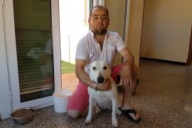 Más de 30.000 personas firman contra el dueño del pitbull del Coll