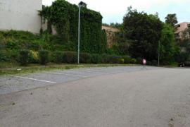 MÉS per Capdepera advierte que el Ajuntament «siempre poda cuando está a punto de florecer»