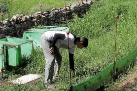 Nace la primera granja de caracoles de Menorca