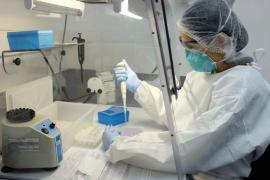 Sanidad admite que el caso de microcefalia por virus zika era esperado