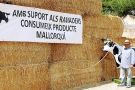 La ausencia de vacas desluce la feria de Campos