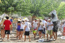 Costitx se lanza dos toneladas de algarrobas en la celebración de su primera 'Garrovada'