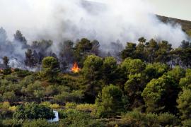 Decretada el nivel 3 de alerta por incendios forestales en toda la Comunidad Valenciana