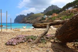 Las precipitaciones no llegan al 75% del valor normal este año en Balears